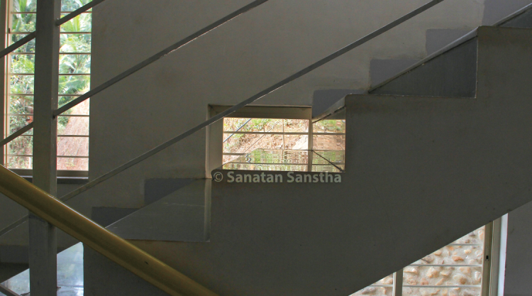 Reflection of plantation on tiles : This is a picture of a tile on a staircase in the studio building of Sanatan Ashram catching the reflection of the plantation outside.