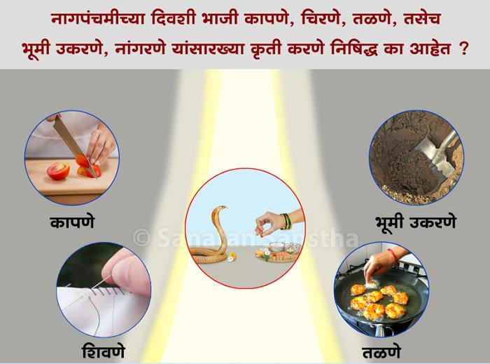 Nagpanchami_nishidhha_kruti-banner1